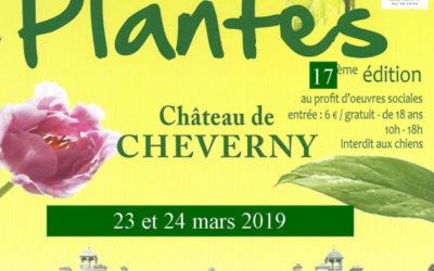 fête des plantes au château de Cheverny